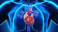 Eine Herzerkrankung kommt nicht von heute auf morgen. Meist gibt es Vorboten, die oft übersehen werden. (Quelle: Nerthuz/Getty Images)